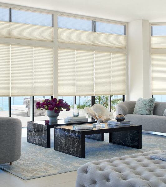 smart shades with top down bottom up Incline Village NV