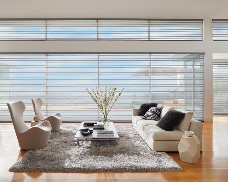 silhouette shades as motorized blinds in Reno NV living room