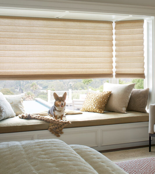 master bedroom with dog and hunter douglas vignette roman insulating shades Reno 89555