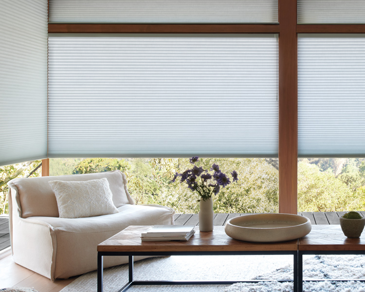 living room with large window and Hunter Douglas energy efficient duette honeycomb shades Reno