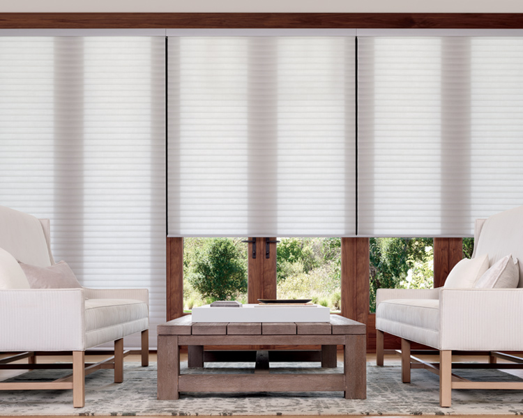 Hunter Douglas sonnette shades on glass doors in Reno 89504