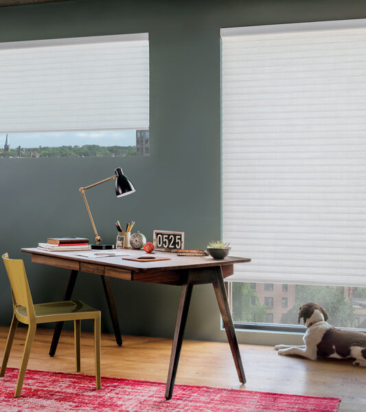 transitional home office with dog and sonnette insulating shades on a large window Reno 89433