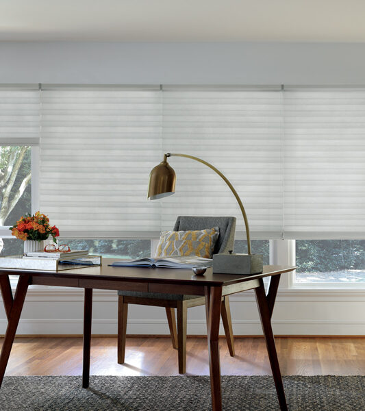 rustic home office with solera soft roman shades by hunter douglas on large window Reno