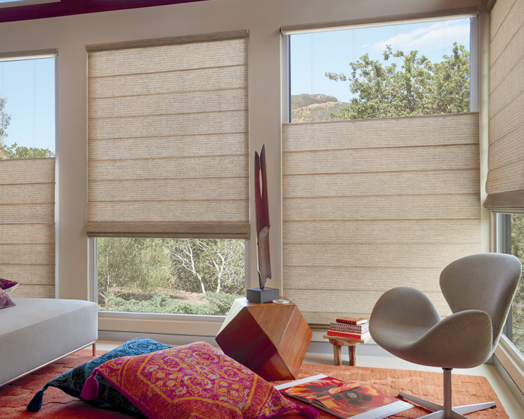 bohemian living room with top down bottom up hunter douglas vignette modern roman shades Reno