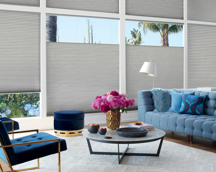 transitional living room with blue velvet sofa with top down bottom up hunter douglas duette honeycomb shades Reno 89503
