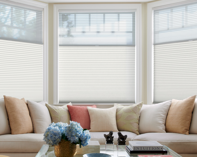 living room large window and hunter douglas duette honeycomb shades for insulating blinds Reno 89520