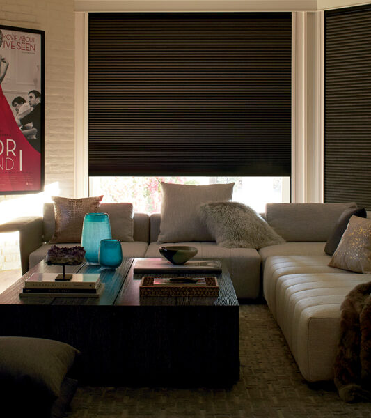 traditional living room with motorized hunter douglas duette honeycomb blackout shades Reno