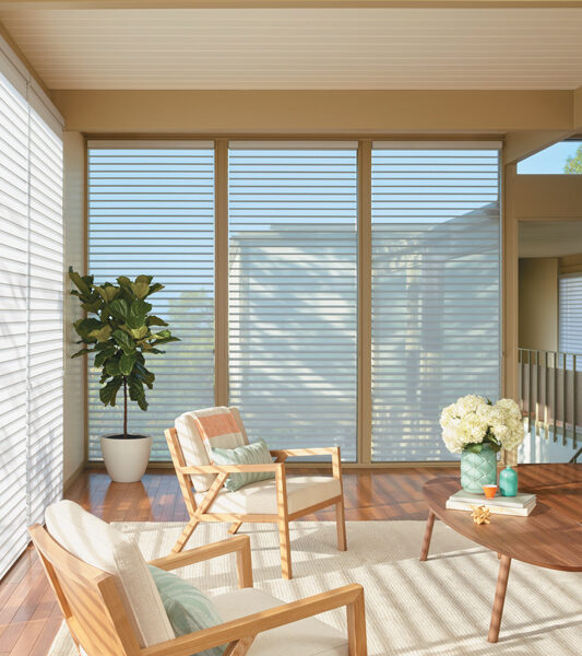 transitional living minimalistic living room with plants and large window silhouette shades by Hunter Douglas Reno