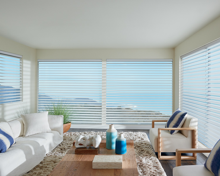 coastal living room with hunter douglas silhouette window shades on large window Reno 89570