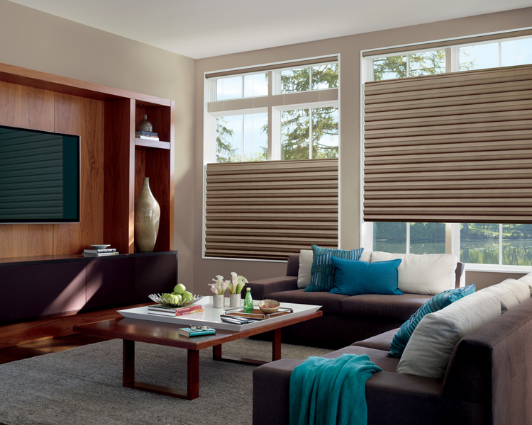 traditional living room with teal accents and Hunter Douglas solera soft roman shades for privacy Reno