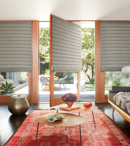 bohemian living room with red woven rug and hunter douglas vignette modern roman shades on glass door Reno 89557