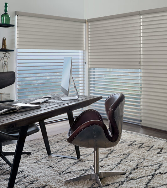 home office with pattern rug and hunter douglas silhouette room darkening shades Reno