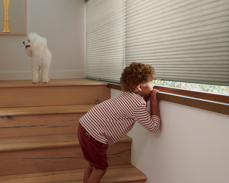 stairwell with boy in striped shirt looking out window with Hunter douglas duette honeycomb shades Reno