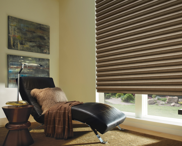 black leather armchair with bronze solera soft roman shades for room darkening by hunter douglas Reno