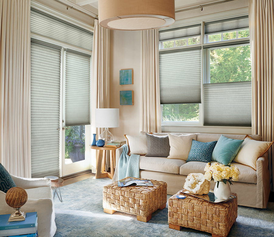 duette honeycomb shades on french doors Reno NV