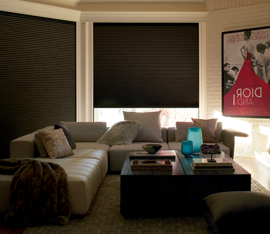 media room with blackout shades Incline Village NV