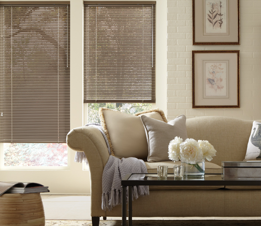 metallic blinds in traditional living room Tahoe