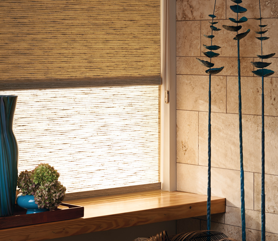dual shades roller shades for light filtering and room darkening Reno NV