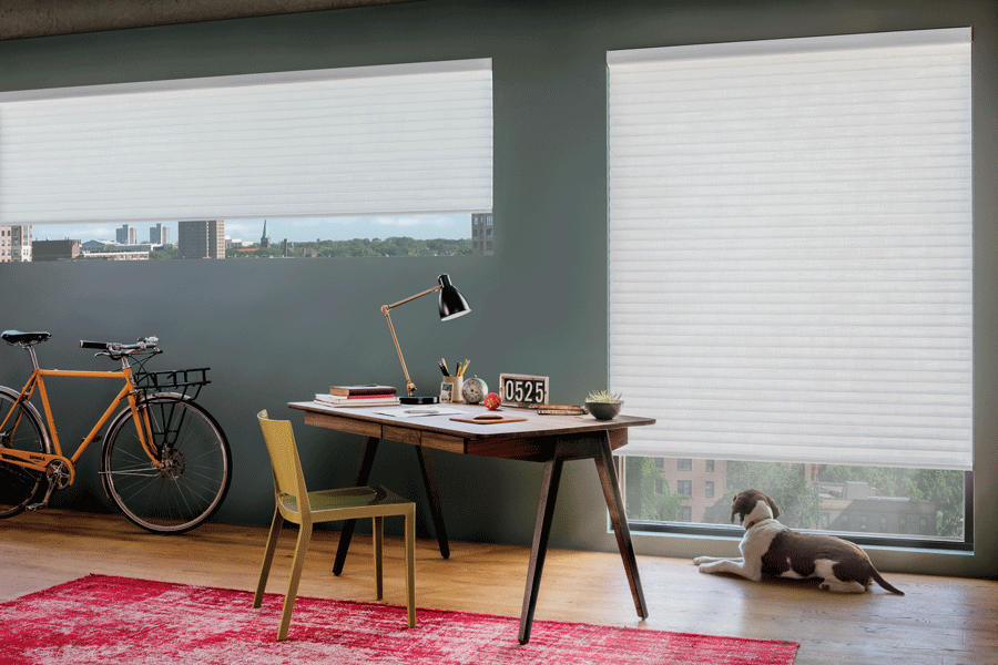 cellular roller shades for home office temperature control Reno NV