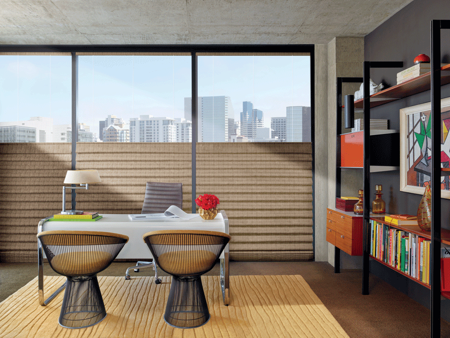 Top down bottom up shades in your home office help stop issues caused by the sun.