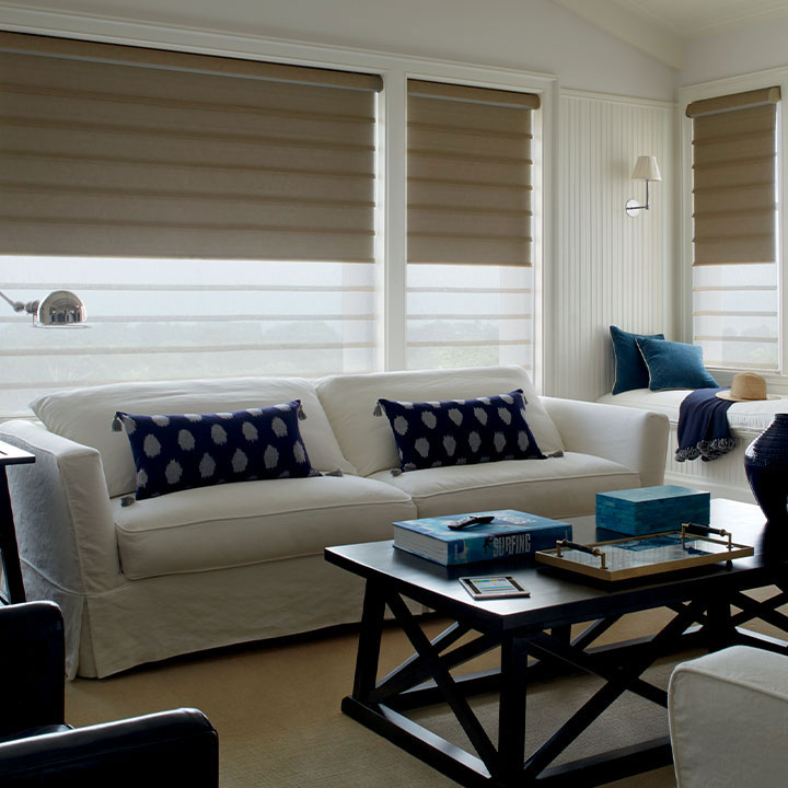roman dual shades in Reno NV living room
