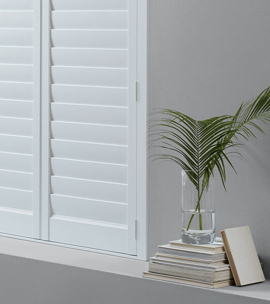 white plantation shutters with fan palm in Reno NV