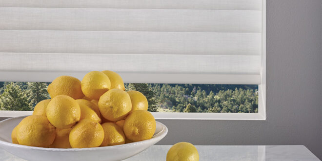 bowl full of lemons with window shades in Reno, NV