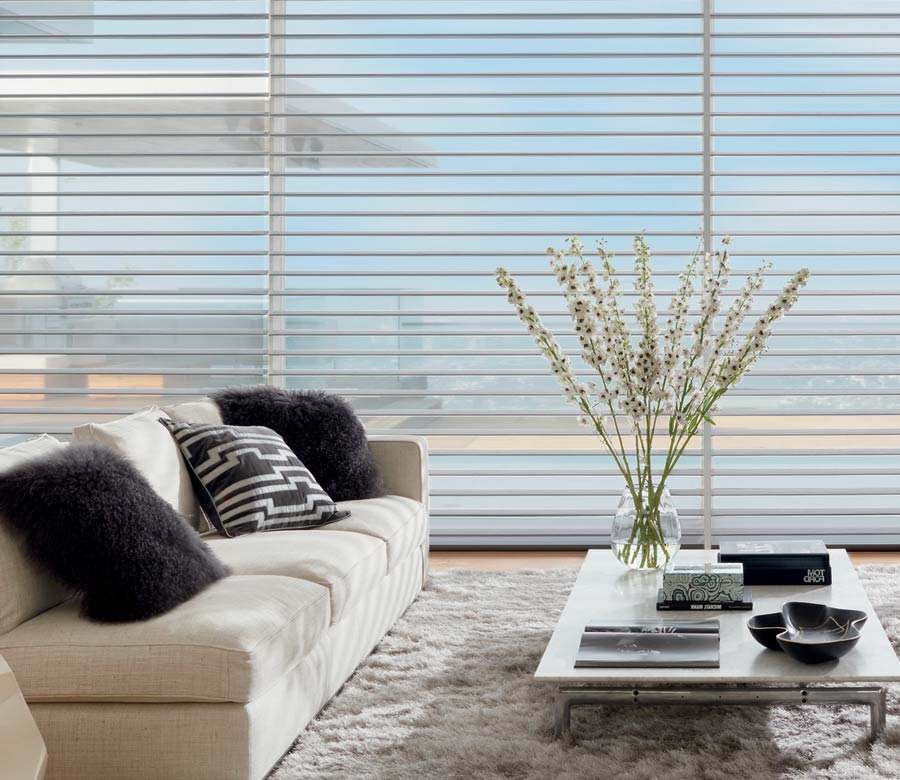 floor to ceiling sheer shades living room view in Reno, NV