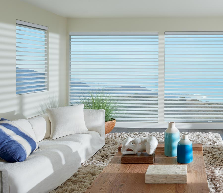 sheer shades in living room of Reno home