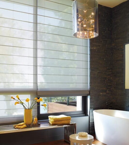 floor to ceiling blinds in Reno NV bathroom