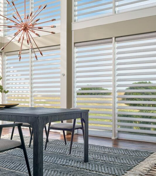 window treatments for large windows pirouette shades in dining room in Reno NV
