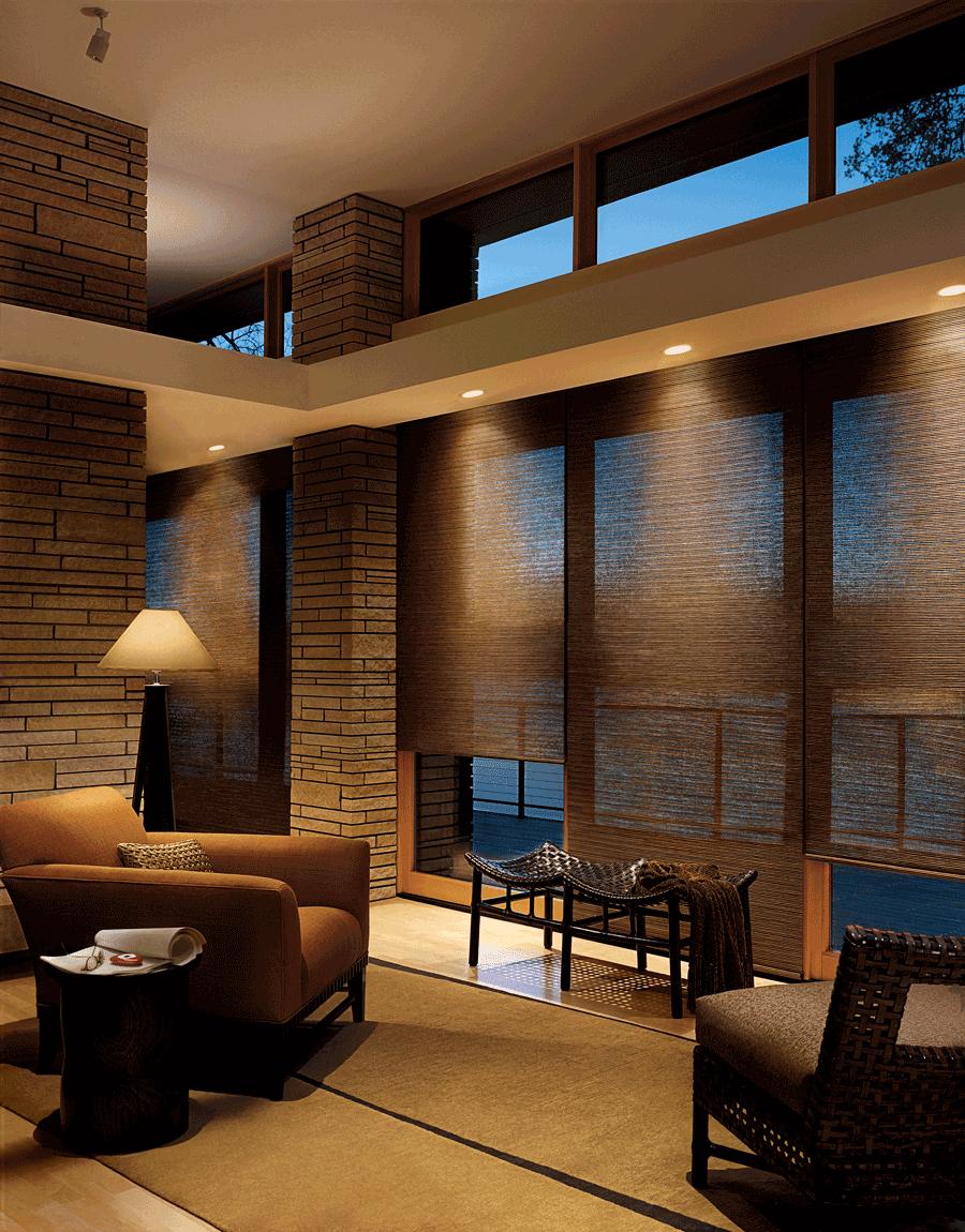 Designer Roller Shades in a living room