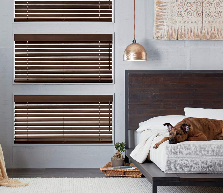 gray bedroom with brown wood blinds with dog sleeping on the bed